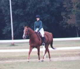 Dressage, Analese and Buddy