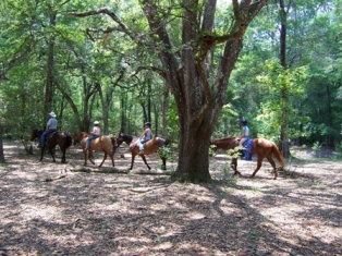 Another picture of youth on trail ride at farm.
